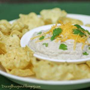 Chipotle Cheese Dip - Delicious and addictive dip with a kick, use for chips, pretzels, veggies, and just about any dippable appetizer!