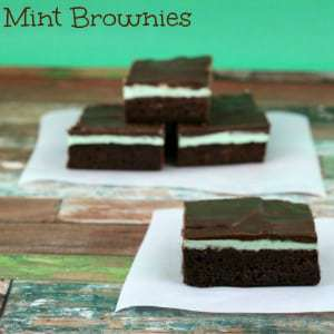 Mint-Brownies-by-Gator-Mommy-Reviews300