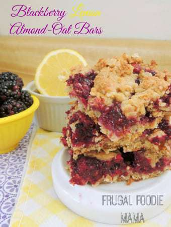 340 frugal foodie mama lemon berry oat bars