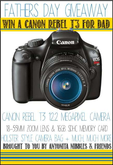 Fathers Day Canon Rebel T3 Giveaway!