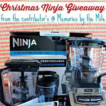 ninja ultra kitchen system giveaway! | dizzy busy and hungry!