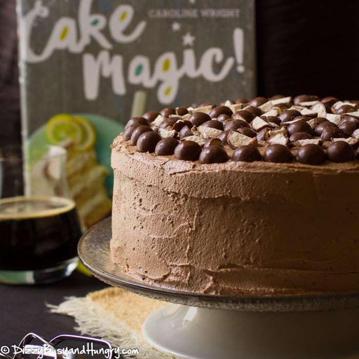 Malted Chocolate Stout Cake | DizzyBusyandHungry.com - Amazingly moist and rich with a creamy malted chocolate frosting, perfect to make any day special! #WeekdaySupper #CakeMagic