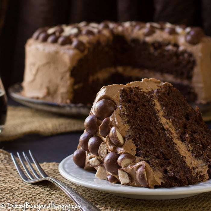Malted Chocolate Stout Cake #WeekdaySupper | Dizzy Busy ...