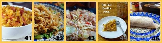 60+ Kid Favorite Dinners, ready in 30 minutes or less!   DizzyBusyandHungry.com
