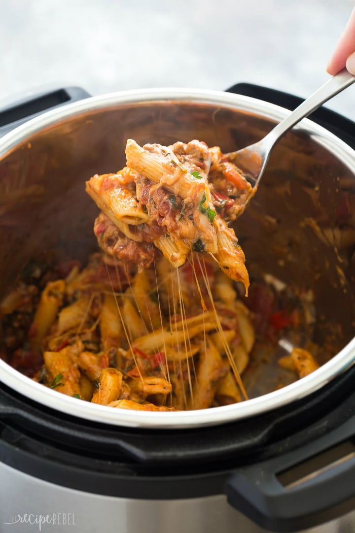 12 Instant Pot One Pot Recipes | DizzyBusyandHungry.com - I just received an Instant Pot as a gift, so now I need some easy Instant Pot recipes to go with it. Here are 12 delicious one-pot dishes I plan to make!